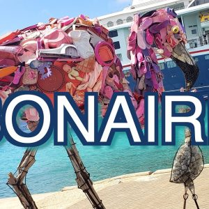 Bonaire Island. Trip Report with Travel Tips. Part I